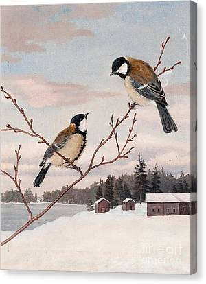 Great Tits Canvas Print by Celestial Images