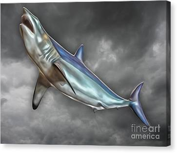 Great White Canvas Print by Gregory Dyer