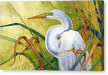 Great White Heron Canvas Print by Lyse Anthony