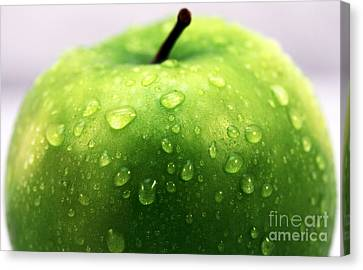 Green Apple Top Canvas Print by John Rizzuto