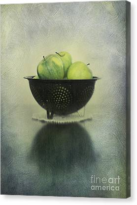 Green Apples In An Old Enamel Colander Canvas Print by Priska Wettstein