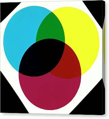 Green Canvas Print by Dorling Kindersley/uig