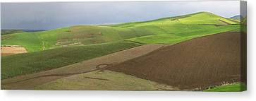 Green Fields Near Fes, Moulay Yacoub Canvas Print by Panoramic Images
