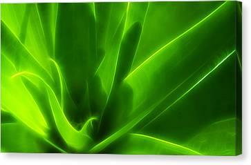 Green Flame Canvas Print by Suradej Chuephanich