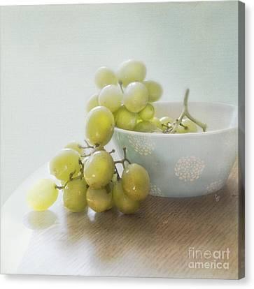 Green Grapes Canvas Print by Cindy Garber Iverson