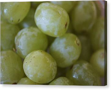 Green Grapes Canvas Print by Laurie Perry