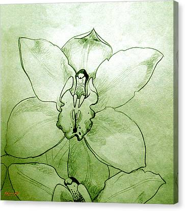 Green Orchid Canvas Print by Patricia Howitt