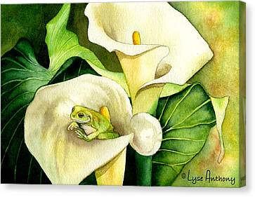 Green Peace Canvas Print by Lyse Anthony