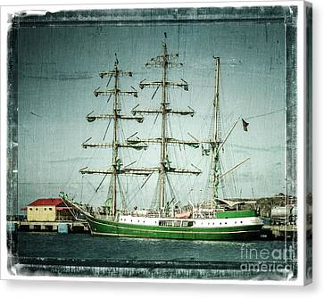 Green Sail Canvas Print by Perry Webster