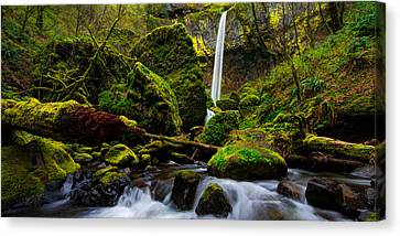 Green Seasons Canvas Print by Chad Dutson