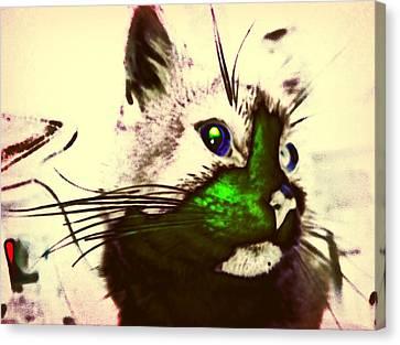 Green Spot Kitty Canvas Print by Eddie G