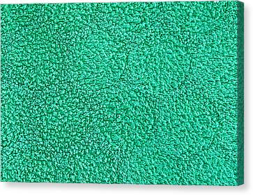 Green Towel Canvas Print by Tom Gowanlock
