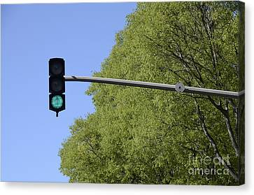 Green Traffic Light By Trees Canvas Print by Sami Sarkis