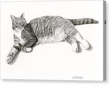 Frieda Canvas Print by Sarah Batalka