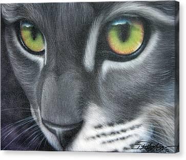 Grey Lady Canvas Print by Darren Robinson