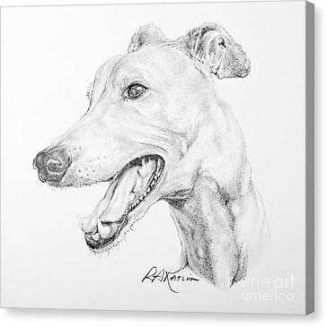 Greyhound Canvas Print by Roy Anthony Kaelin