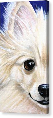 Grinning Pom Canvas Print by Debbie Finley