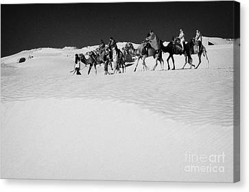 group of tourists in desert dress on camel back being taken through the sand dunes and ruins sahara desert at Douz Tunisia Canvas Print by Joe Fox