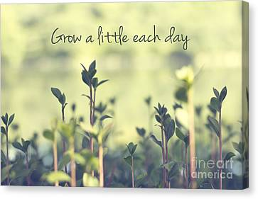 Grow A Little Each Day Inspirational Green Shoots And Leaves Canvas Print by Beverly Claire Kaiya