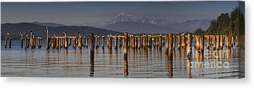 Guemes Channel Trail Panorama Canvas Print by Mark Kiver