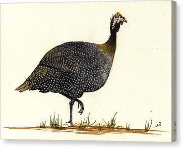 Guinea Fowl Canvas Print by Juan  Bosco