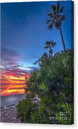 Gulf Mirror Canvas Print by Marvin Spates