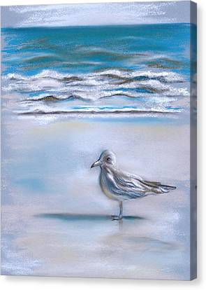 Gull On The Shore Canvas Print by MM Anderson