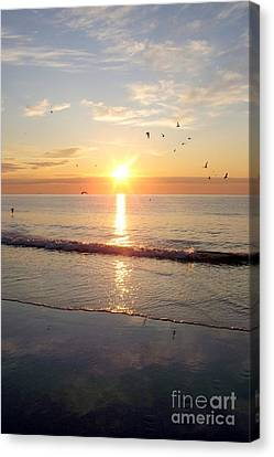 Gulls Dance In The Warmth Of The New Day Canvas Print by Eunice Miller