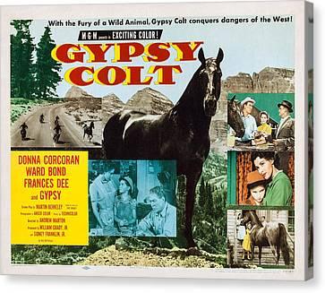 Gypsy Colt, Us Lobbycard, Center Canvas Print by Everett