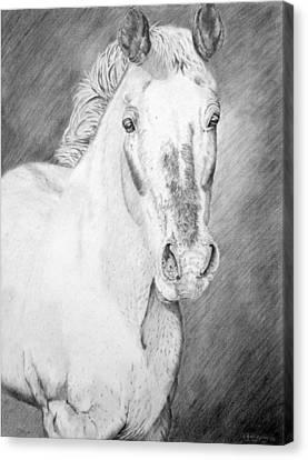 Gypsy Canvas Print by Wendi Matson
