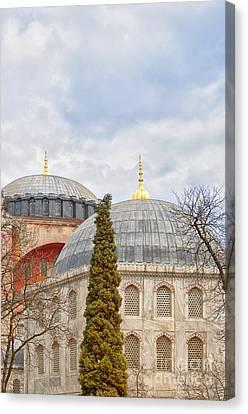 Hagia Sophia 11 Canvas Print by Antony McAulay