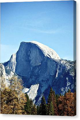 Half Dome Canvas Print by Richard Reeve