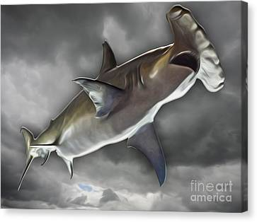 Hammerhead Canvas Print by Gregory Dyer