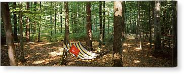 Hammock In A Forest, Baden-wurttemberg Canvas Print by Panoramic Images