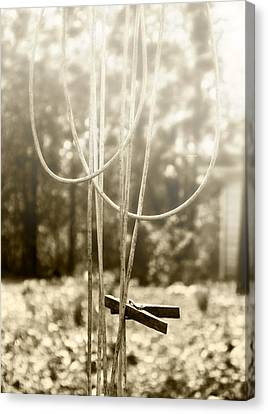 Hang It Up Canvas Print by Kristie  Bonnewell