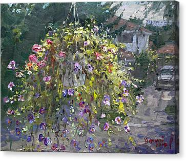 Hanging Flowers From Balcony Canvas Print by Ylli Haruni