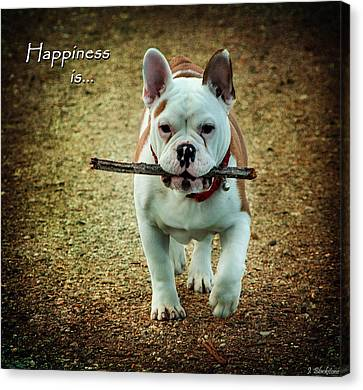 Happiness Is Canvas Print by Jordan Blackstone