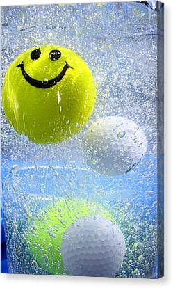 Happy  Canvas Print by Paula Brown