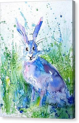 Hare Stare Canvas Print by Trudi Doyle