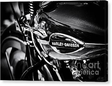 Harley Davidson Monochrome Canvas Print by Tim Gainey