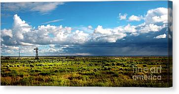 Harney City Sagebrush Canvas Print by Michele AnneLouise Cohen