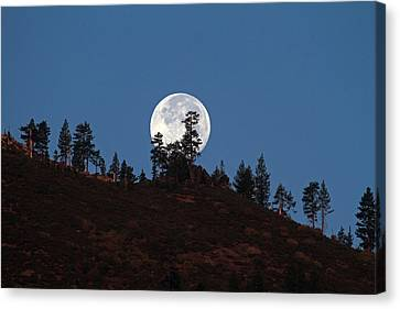Harvest Moonset Canvas Print by Donna Kennedy