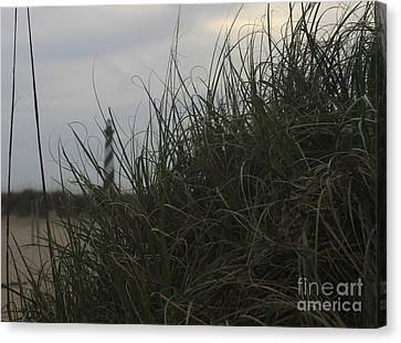 Hatteras Behind The Dunes 3 Canvas Print by Cathy Lindsey