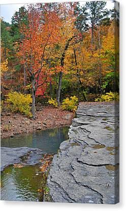 Haw Creek Fall 2 Canvas Print by Marty Koch