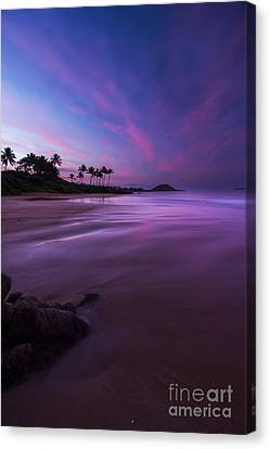 Hawaii First Light Sunrise Canvas Print by Dustin K Ryan
