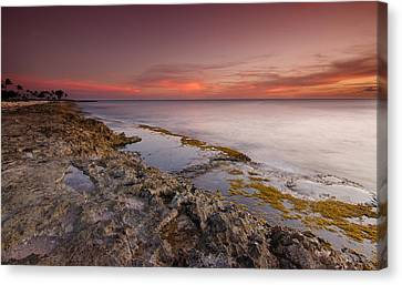 Hawaii Sunset Paradise  Canvas Print by Tin Lung Chao
