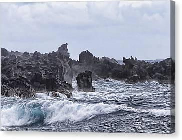 Hawaii Waves V1 Canvas Print by Douglas Barnard