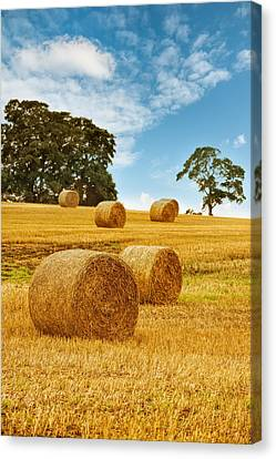 Hay Bales Canvas Print by Amanda And Christopher Elwell