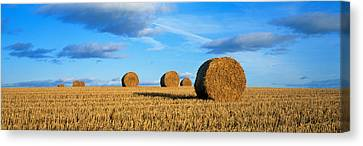 Hay Bales, Scotland, United Kingdom Canvas Print by Panoramic Images