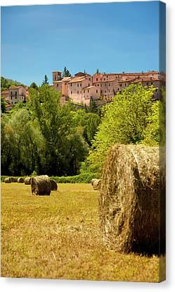Hay In A Farmers Field Below Castel San Canvas Print by Brian Jannsen